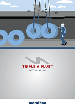 Triple A Plus Brochure